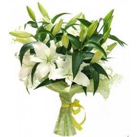 3 лилии белые