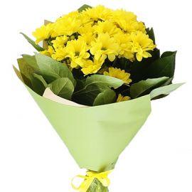 5 хризантем желтых
