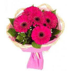 5 гербер розовых