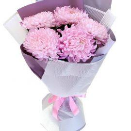 5 хризантем игольчатых розовых