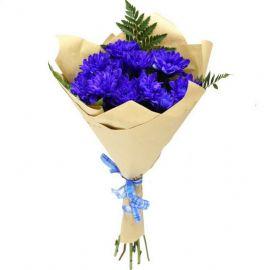5 хризантем кустовых синих