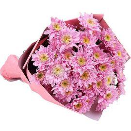 7 хризантем кустовых розовых
