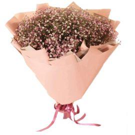 25 гипсофил розовых