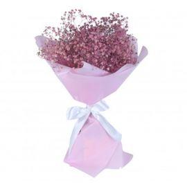 15 гипсофил розовых