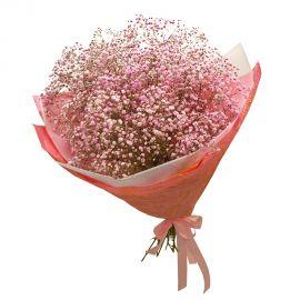 35 гипсофил розовых