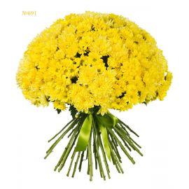 45 хризантем кустовых желтых