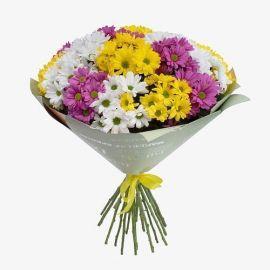 21 хризантема кустовая микс
