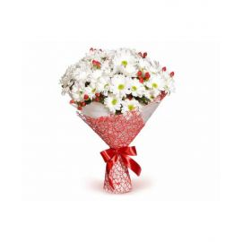 17 кустовых хризантем белых