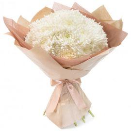 21 хризантема игольчатая белая