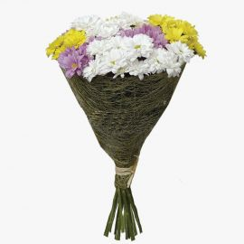 11 хризантем кустовых микс