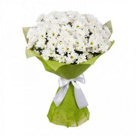 17 хризантем кустовых белых