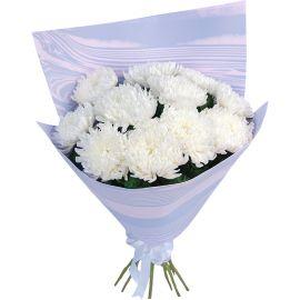 13 хризантем игольчатых белых