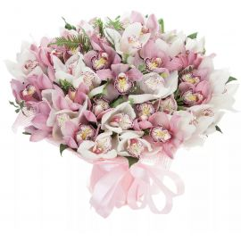 51 орхидея микс