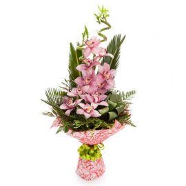 13 орхидей розовых 2 бамбука