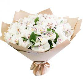33 орхидей белых