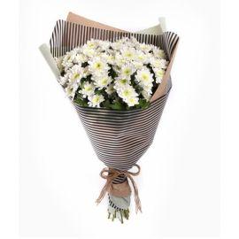 11 хризантем кустовых белых
