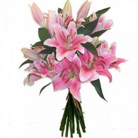 11 лилий розовых