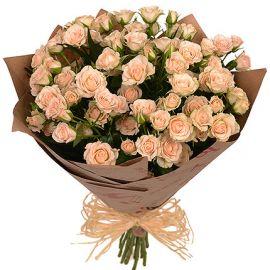 13 кустовых роз кремовых