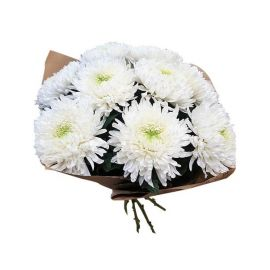 9 хризантем иголчатых белых