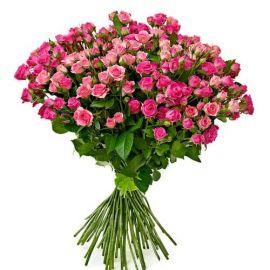 45 кустовых роз розовых