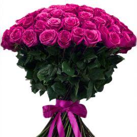 101 роза темно-розовая