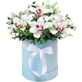 7 орхидей
