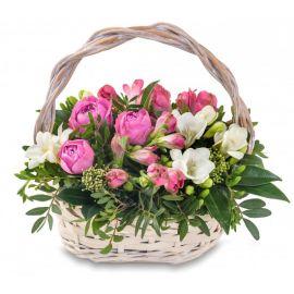 11 альстромерий 5 фрезий 3 розы кустовых