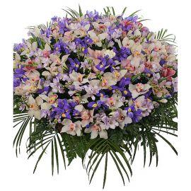100 орхидей 45 ирисов 15 фрезий