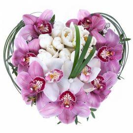 11 тюльпанов 8 орхидей