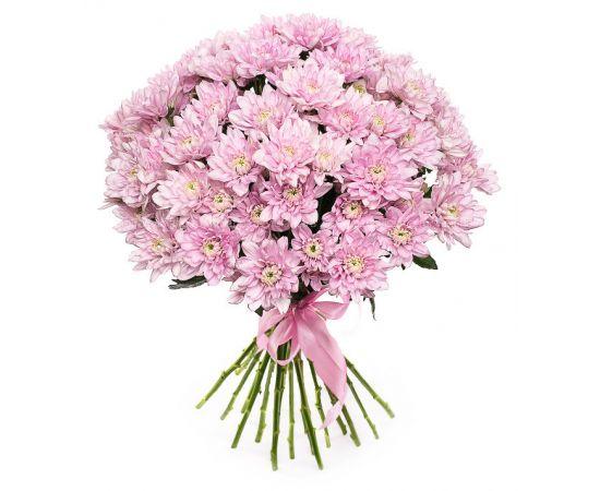 21 хризантема кустовая розовая