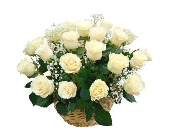 27 роз